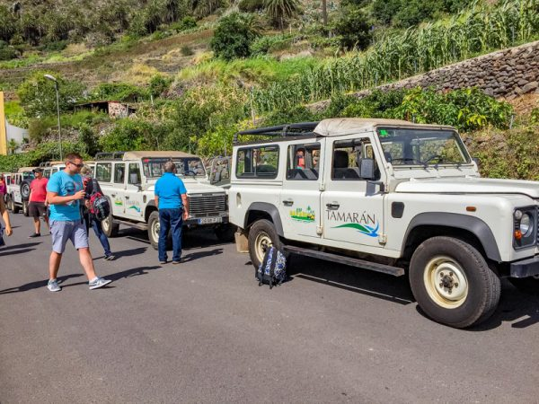 Jeep Safari - La Gomera