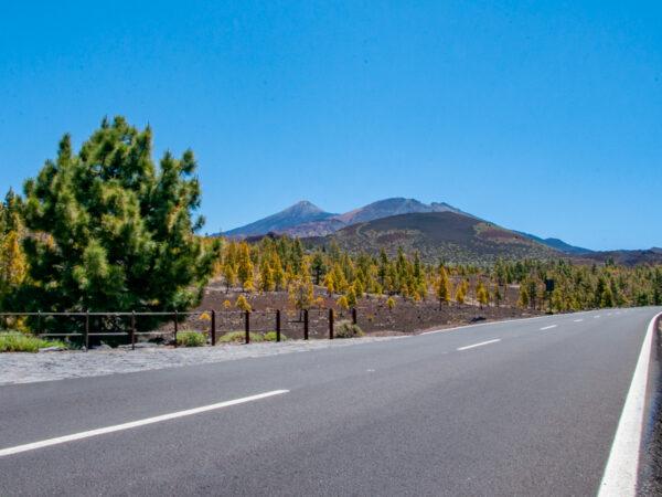 Droga na wulkan El Teide - Quady na Teneryfie